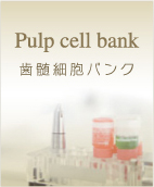 menu_pulp_cell_bank